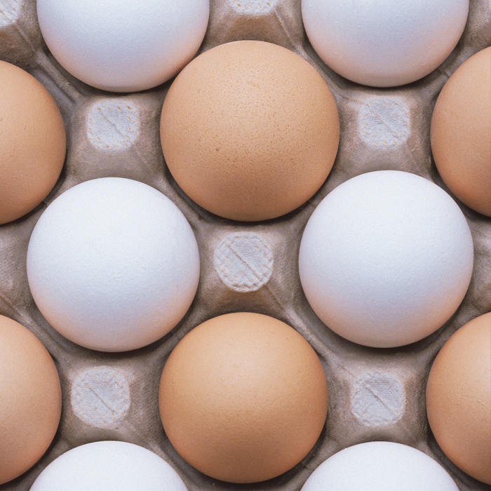 7 Things You Didn't Know About Eggs