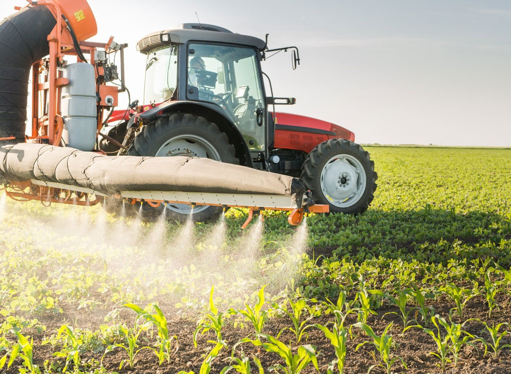 The Foods With the Least Pesticides