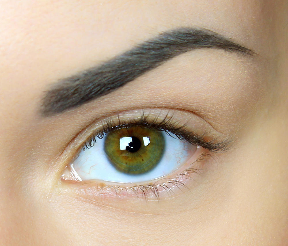 Your Perfect Eyebrows Playbook