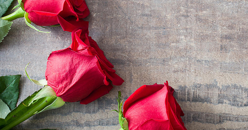 Is Rosewater the Secret to Healthy Skin?