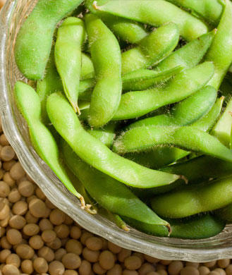 5 New Ways to Enjoy the Benefits of Soy