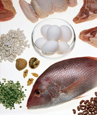Ask the Diet Doctor: What's the Best Protein Source?