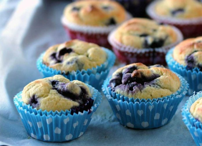 20 Healthy Blueberry Muffin Recipes