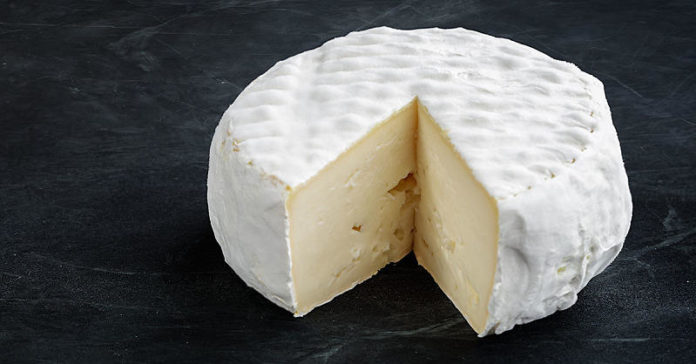 Full-Fat Cheese Is Totally Fine, Says Science