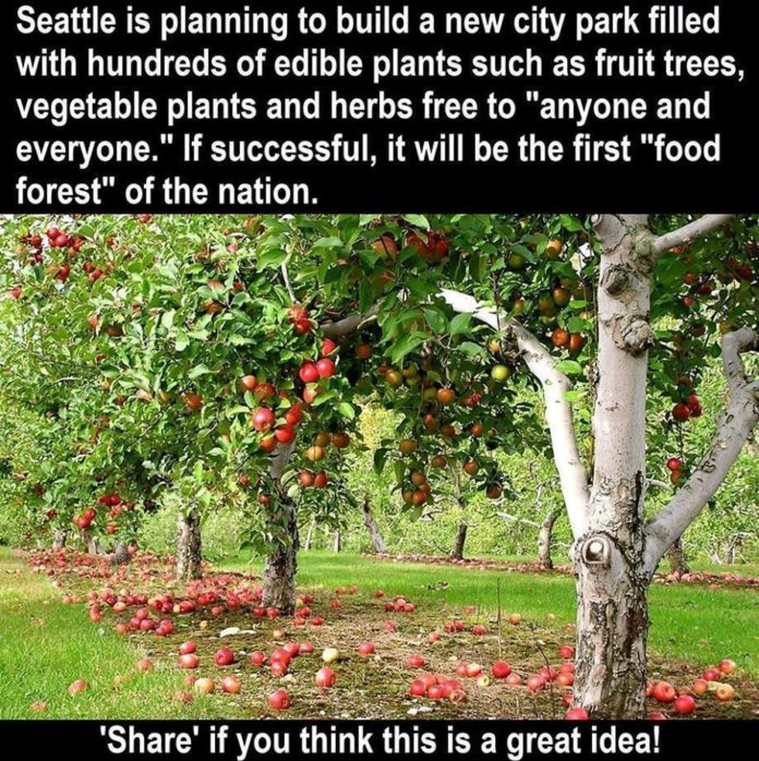 I love this idea! Could you imagine this all over the country and the world actu...