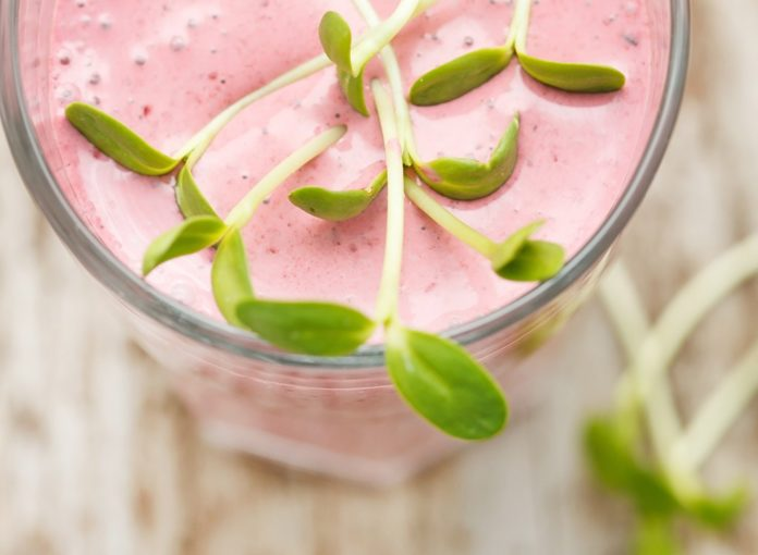 5 Best Iced Tea Smoothies for Weight Loss