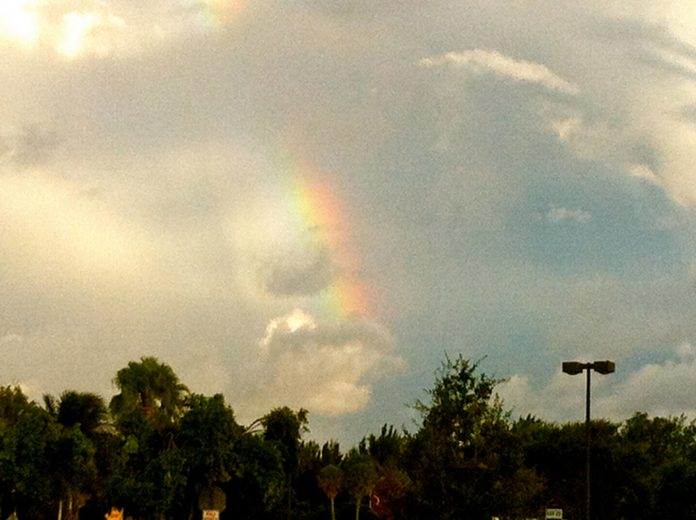 Look at this incredible image that greeted us as we walked out of our meditation...