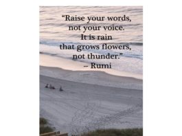 So much rain in South Florida; making gorgeous flowers! What beautiful words by...