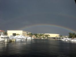 With all the rain look at this beauty Mother Nature gave to us here in Boca Rato...