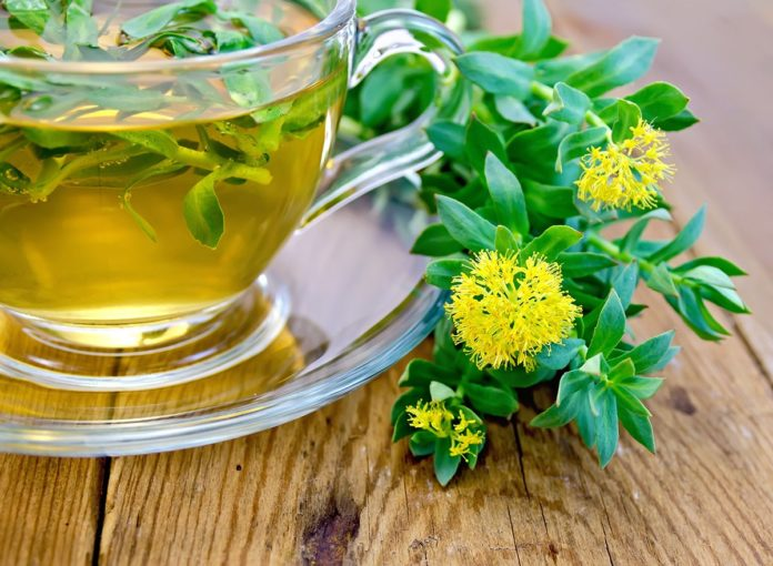 Rhodiola: The Health Benefits of This Popular Herbal Adaptogen
