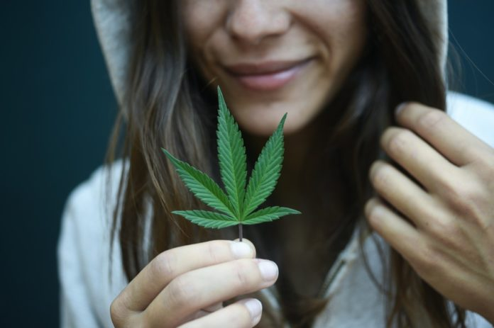 Study: Cannabis May Stop COVID-19 Infections