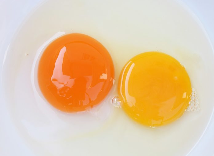 The Surprising Reason the Color Of Egg Yolks Matter