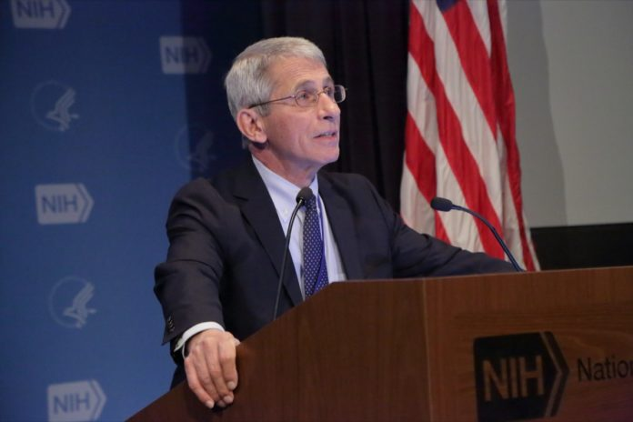 Dr. Fauci Says These States are in Danger From COVID-19