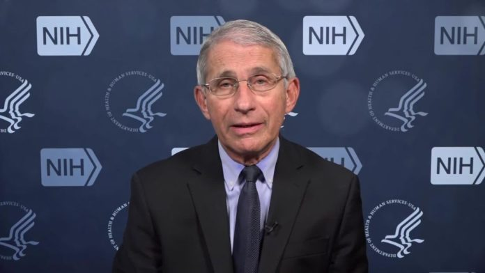 Dr. Fauci Warns These 7 States to Be On Alert