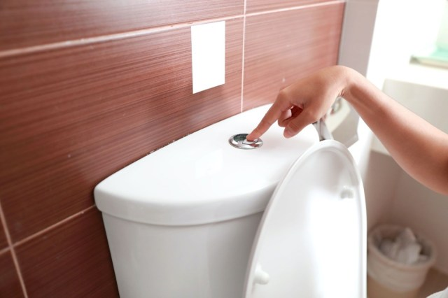woman hand flush toilet after using