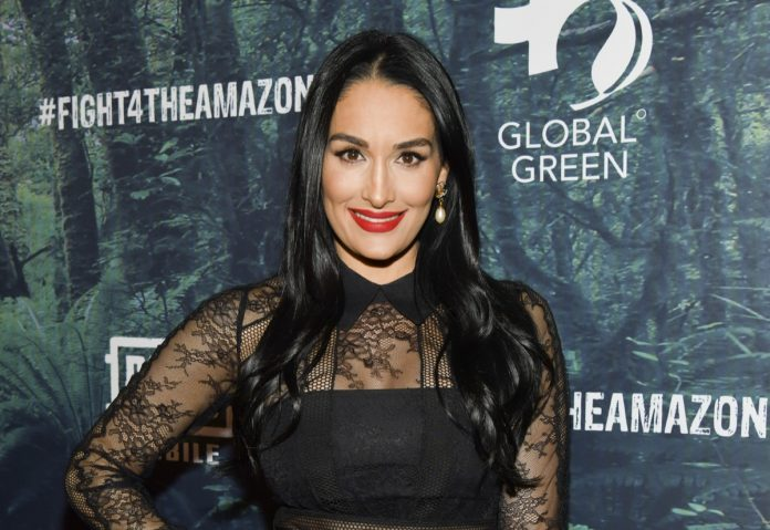 Nikki Bella Shows Off the Exact Workout That Transformed Her Body