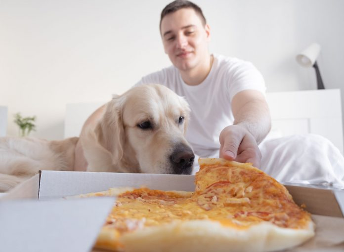 One Major Side Effect Your Weight Gain Has on Your Dog's Health, New Data Says