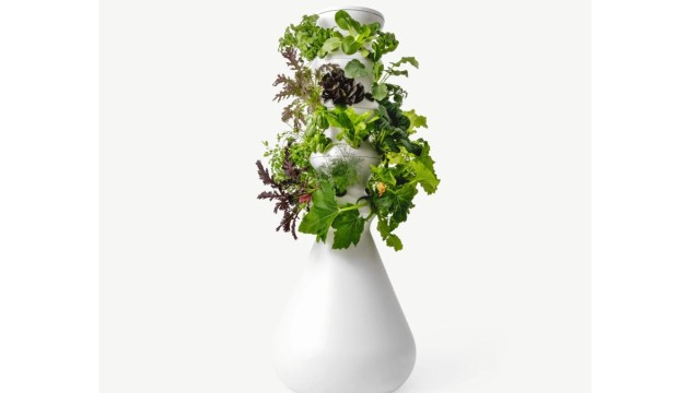 lettuce grow farmstand with leafy vegetables in white pot